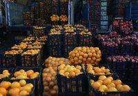 توزیع ۴ هزار تن سیب و پرتقال در استان تهران