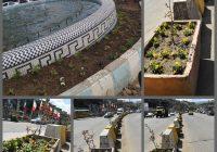 کاشت گل های فصلی در سطح شهر گرمی